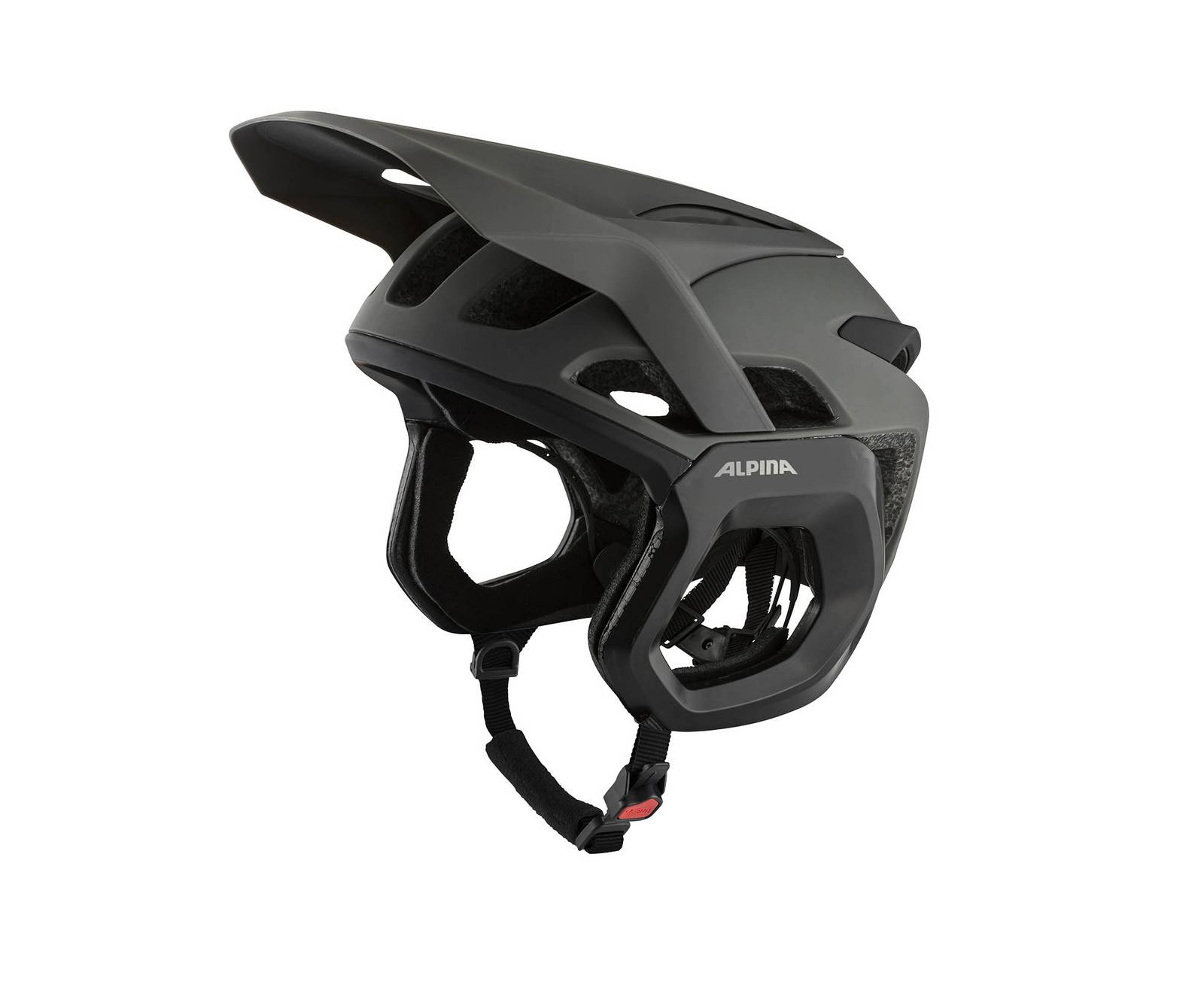 bike helm alpina