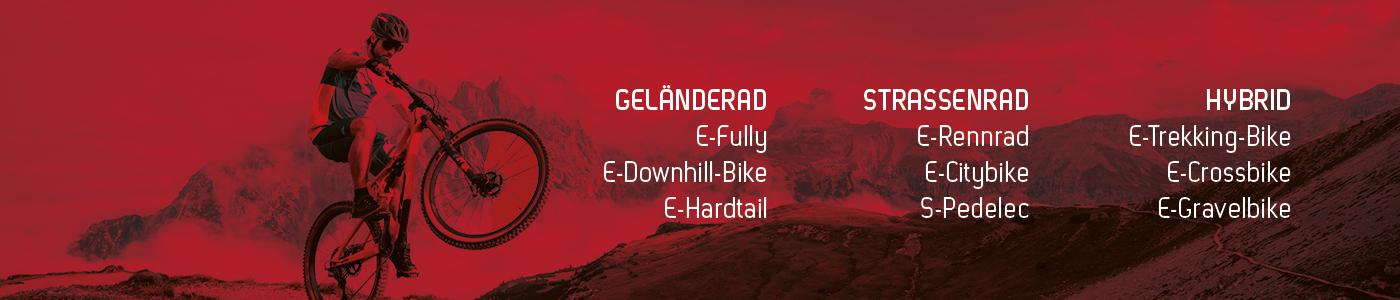 Eine Übersicht über E-Bike Klassen nach Kategorien und Typen.